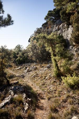 Los Ports mountains. Natural Park Stock Photo