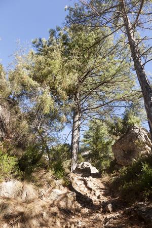 Los Ports Park Natural