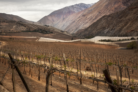 Landscape in Elqui Valley. Nort of Chile Stock Photo