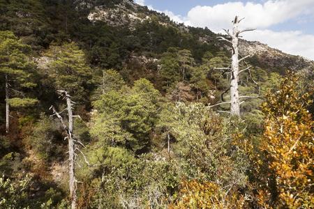 Los Ports mountains. Tarragona province Stock Photo