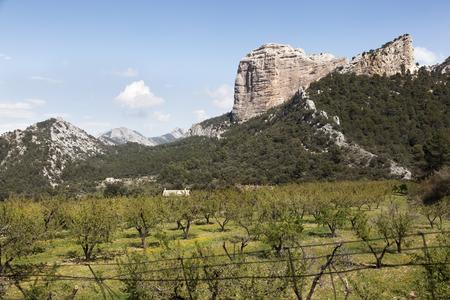 Los Ports mountains natural park
