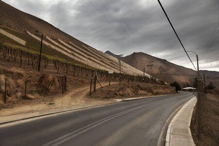 Elqui Valley Vineyards