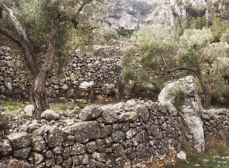 The art  building walls in dry stone, traditional in rural areas  Croatia, Cyprus, France, Greece, Italy, Slovenia, Spain and Switzerland, was inscribed today   in its Representative List  the Intangible Cultural   Humanity. Archivio Fotografico