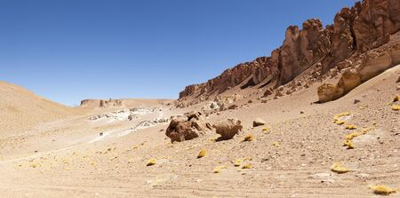Salar of Tara, Atacama Desert. North Chile