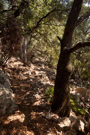 Views of Los Ports natural Park. Teruel province