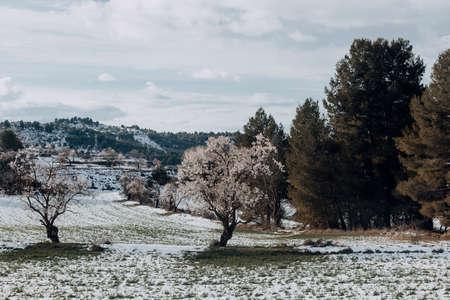 Winter in the fields around Valderrobres. Teruel province