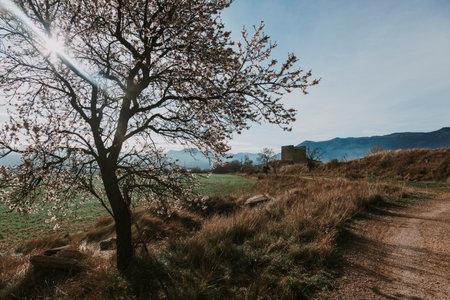 Valderrobres in Spring. Teruel province