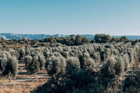 Matarranya. Teruel province