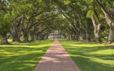 southern: Oak Alley Plantation Tree Tunnel Leading Up To The Mansion Stock Photo