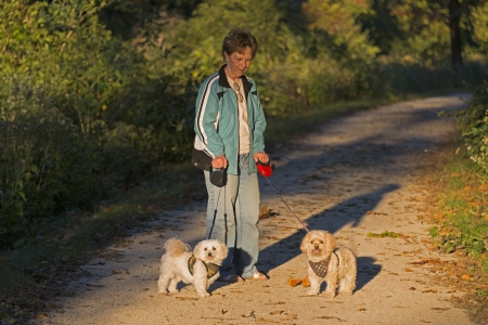 Adult Woman Walking Two Puppies At Sunset photo