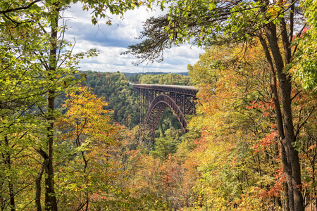 west virginia trees: The New River Gorge Bridge In Autumn, seen from the Canyon Rim Visitor Center Overlook, West Virginia