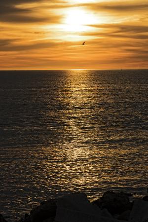st  petersburg: Sunset Over St. Petersburg Florida