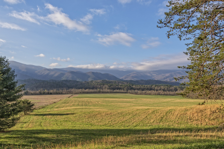 cove: Early Morning At Cades Cove In The Great Smoky Mountains National Park
