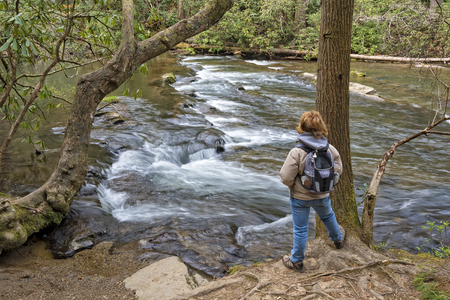 cove: Hiking Along Abrams Creek At Cades Cove In The Great Smoky Mountain National Park In Tennessee