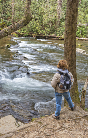 great smoky mountains national park: Hiking Along Abrams Creek At Cades Cove In The Great Smoky Mountain National Park In Tennessee