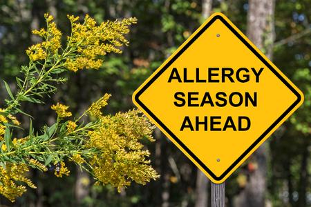 주의 표시 - 알레르기 계절