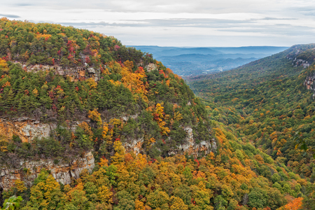 Cloudland Canyon State Park Overlook View During Autumn In  Rising Fawn Georgia