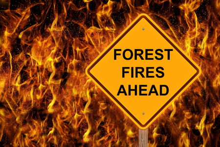Forest Fire Ahead Caution Sign With Flaming Background