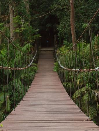 objectivity: The bridge for across river  Stock Photo