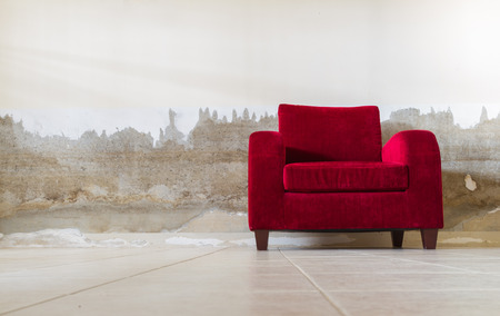 furnish: Red velvet sofa for decorate and design project.