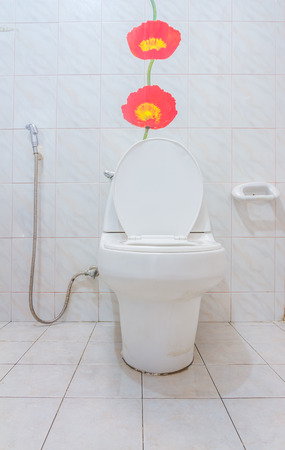 excreta: The flush toilet for design or decorate project.