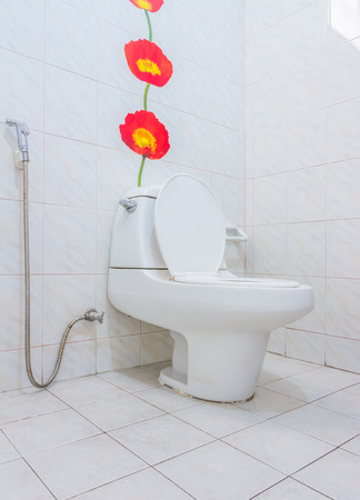 The flush toilet for design or decorate project.