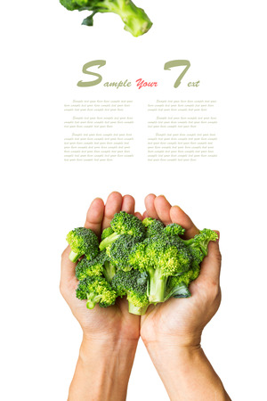 Broccoli on the hand and white isolate background  Stock Photo