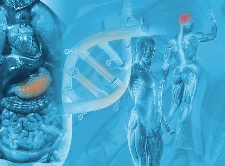 科学背景デザインを飾るプロジェクトのオブジェクトの科学。