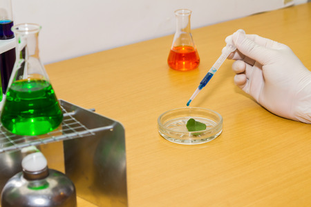 solubility: Group of laboratory on background.