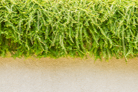slab: slab and grass of nature on background