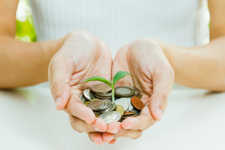 Handful of coins in palm hands,Businessman holding plant sprouting from a handful of coins,finance concept,business background and selective focus.