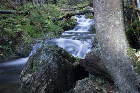 The river White Opava in the Jeseniky mountain in the Czech Republic