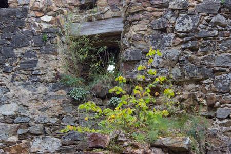 loophole in the walls of Cornstejn castle in the Czech Republic