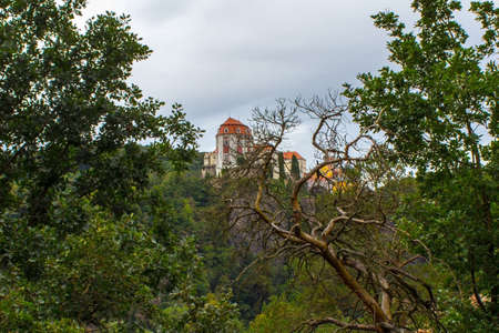 View of Castle Vranov nad Dyji in the Czech Republic over a dry tree 新闻类图片