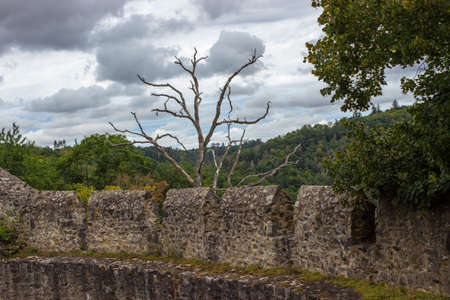 Monument to the dry tree behind the walls of Cornstejn Castle in the Czech Republic