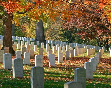 Graves at Arlington National Cemetary with fall foliage Фото со стока