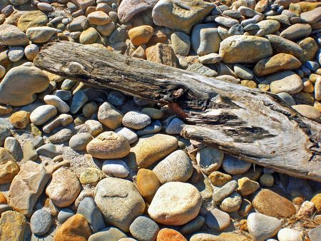 Driftwood and assorted smooth stones on a beach