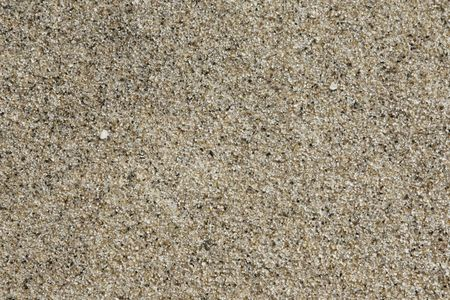 gritty: Close-up of sand on a beach showing texture detail.