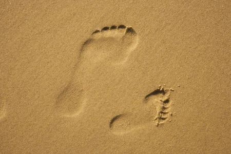 Footprints in beach sand from a parent and child