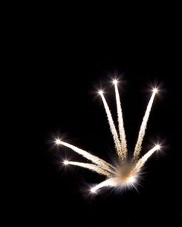 Bright fireworks starburst shell on a dark night.
