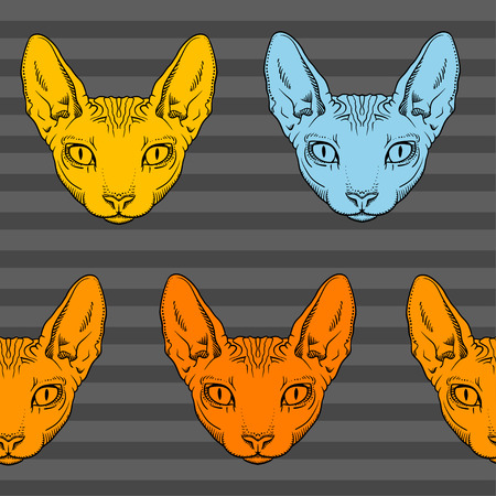 sphinx: pattern hairless sphinx cat face graphics, outline black and white Illustration