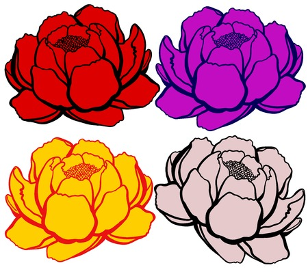 pistil: Set 4 cartoon lily open, different colors on white background
