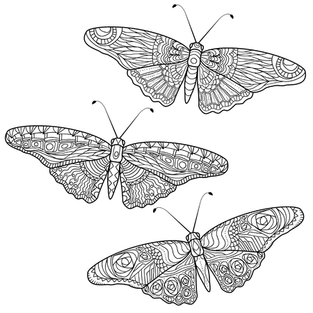 Butterfly for anti stress coloring pages in doodle style. Illusztráció