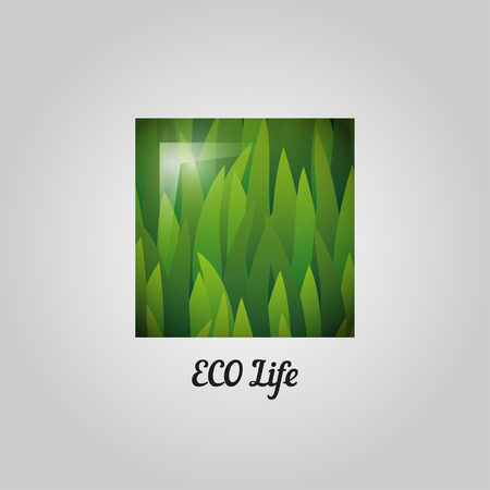 ball park: Eco friendly label. Green geometric element with grass and gradient. Healthy organic product design elements.