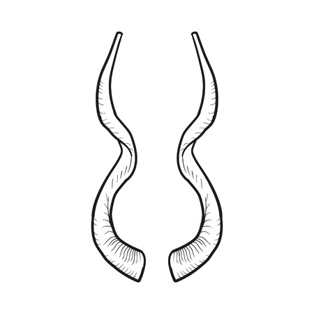 tora: Black doodle contoure of horns isoleted on white.
