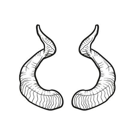 Black doodle contoure of horns isoleted on white.