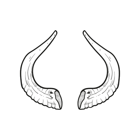 tora: Black doodle contour of horns isolated on white. Stock Photo