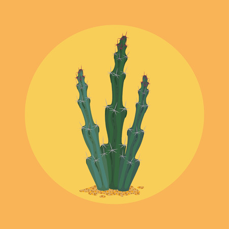 Simmple flat Cactus isolated on orange background.
