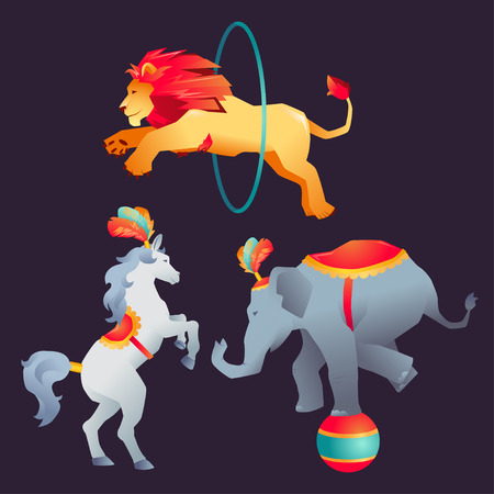 boyish: Set of Circus trained wild animals performance on dark background