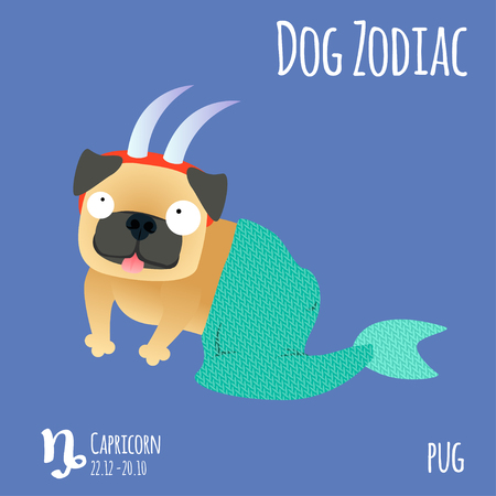 Illustration of a zodiac sign with a funny dog. Pug Capricorn